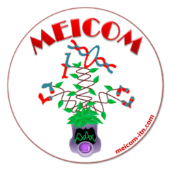The MEICOM NETWORK